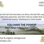 caro_feely_chief_seattle
