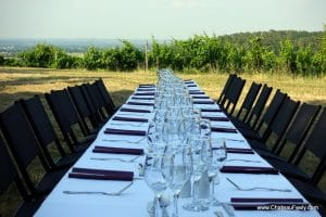 Dinner in the vines at Chateau Feely