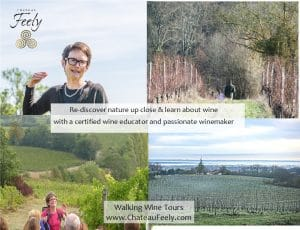 Walking wine tour in France