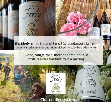 Chateau Feely Brochure and visits 2018