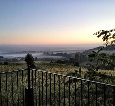 Video and Ten Reasons to visit Chateau Feely