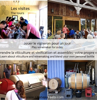 Chateau Feely brochure et visites 2018