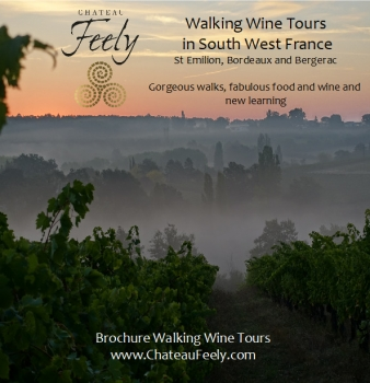 Bordeaux Bergerac Vineyard Walking wine tours
