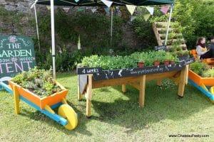 Garden_inspiration_ballymaloe_litfest