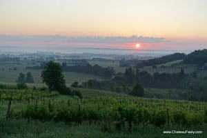 Fireball sun rises around 6am over chateau feely vines
