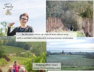 Walking wine tour in France
