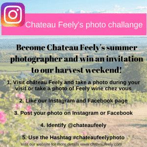 #Chateaufeelychallenge