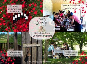 Bons Cadeaux à Chateau Feely: un monde d'options