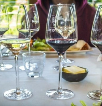 Wine and Food pairing part 3 what wine pairs with chicken