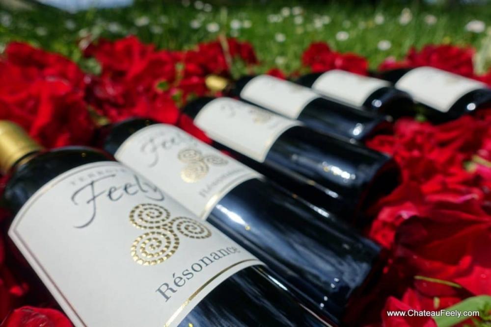 Feely organic wines