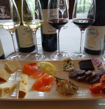Wine & Food Pairing Part 2 Red Wine pairing
