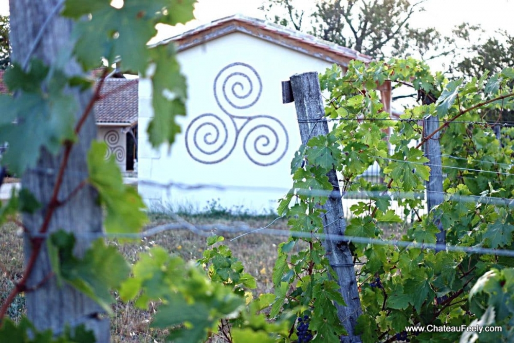 Chateau Feely triskell mosaic and cabernet sauvignon vines