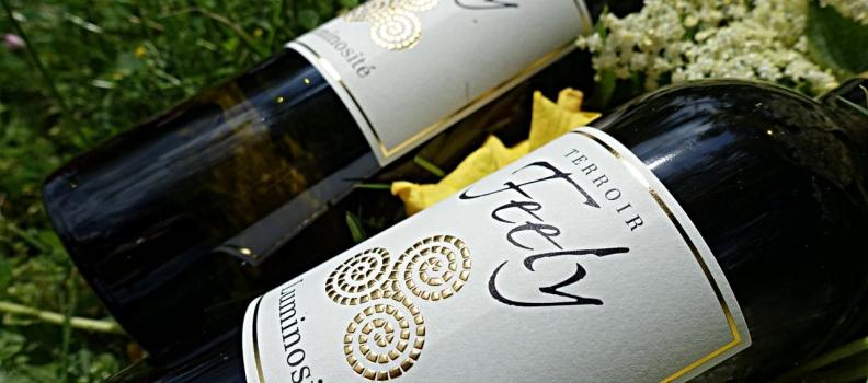 Why dark bottles for white wine?