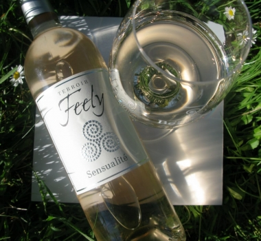 Special offer summer rosé and red