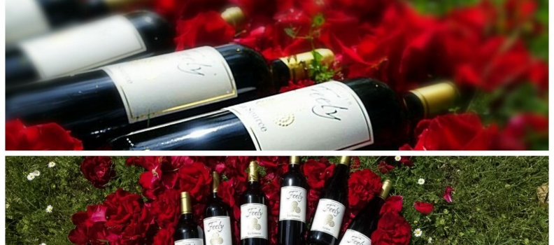 Order organic Christmas wine to ship direct in the EU