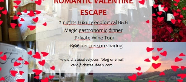 Romantic Valentine getaway on organic vineyard