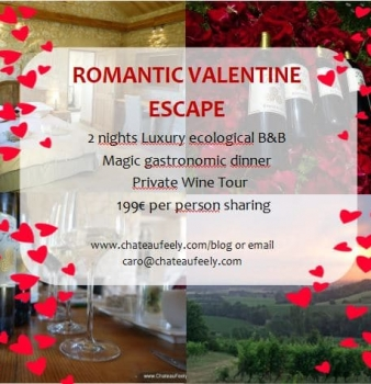 Romantic Valentine getaway on organic vineyard