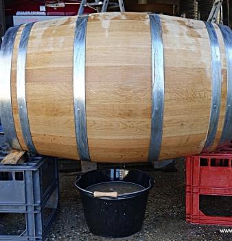 Racking the Feely Générosité 2016 barrel aged semillon
