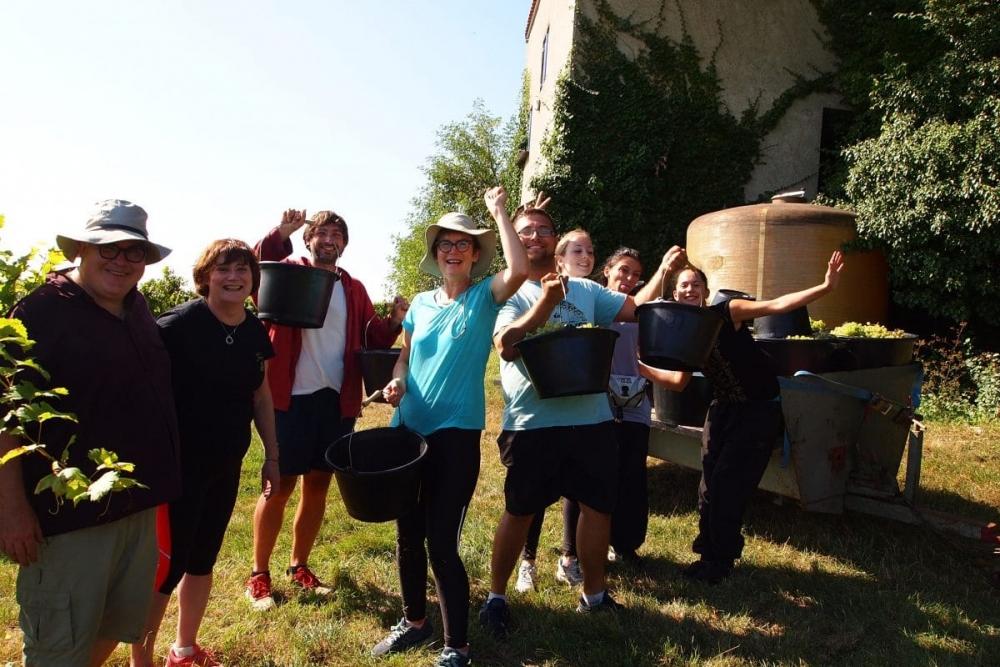 Handpicking harvest team