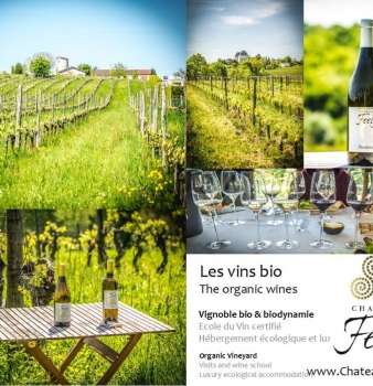 Why choose Organic Anything? (But especially wine) Intro to series on why organic