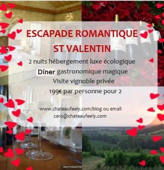 Cadeau St Valentin escapade luxe vignoble bio 1 heure de Bordeaux