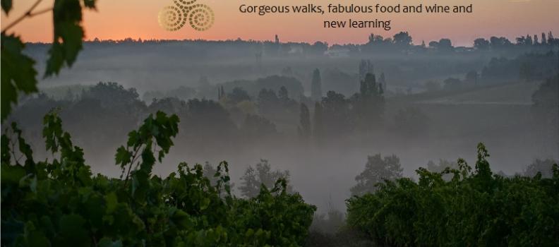 Bordeaux Bergerac Vineyard Walking wine tours